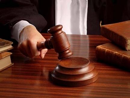 modelo-de-escrito-de-alegatos-por-parte-de-la-demandada-en-juicio-reivindicatorio